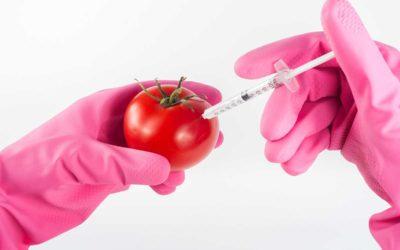 GMO or Non-GMO Does It Matter